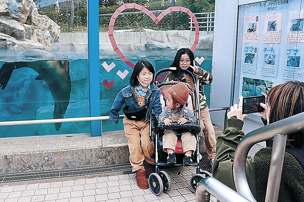写真撮影を楽しむ来園者=能美市のいしかわ動物園