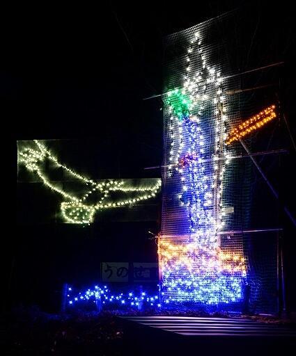 送水神事(右)とワシを表したイルミネーション=福井県小浜市下根来の鵜の瀬公園