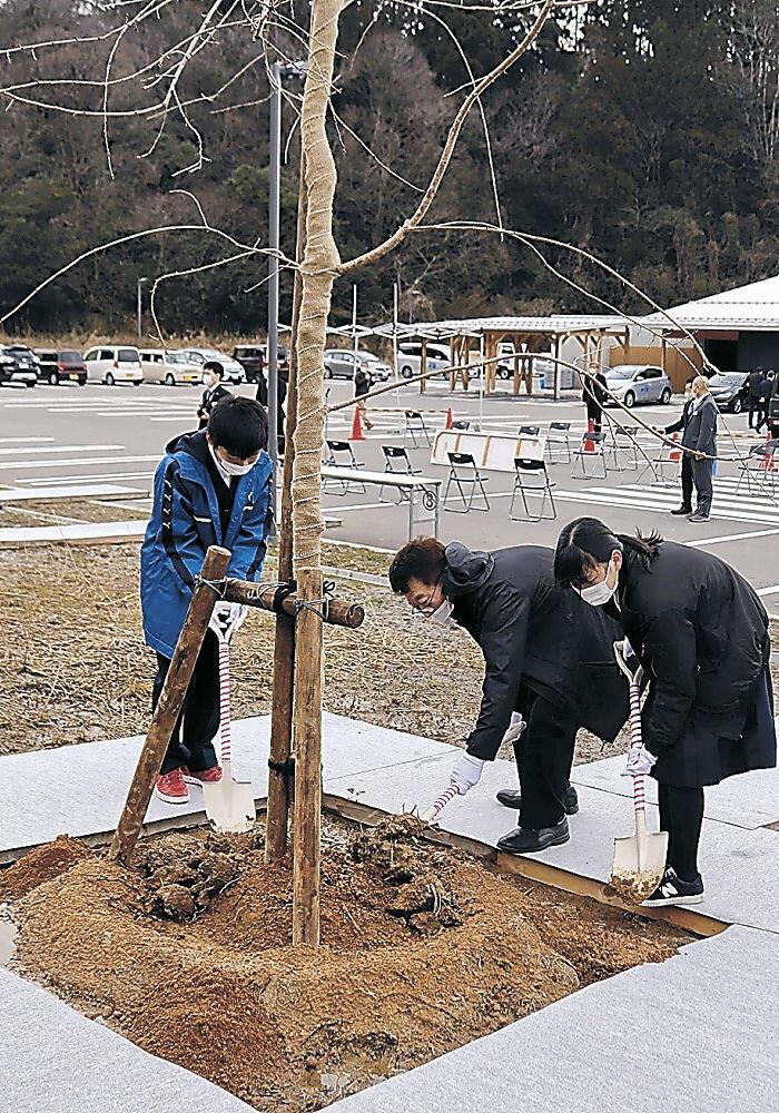 児童とともに植樹に取り組む石岡社長(中央)=能登町越坂
