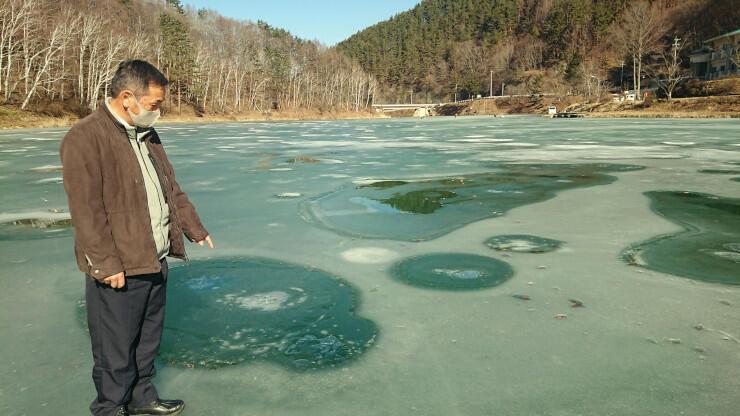 張った氷に円形の模様が幾つも浮かび上がる立岩湖