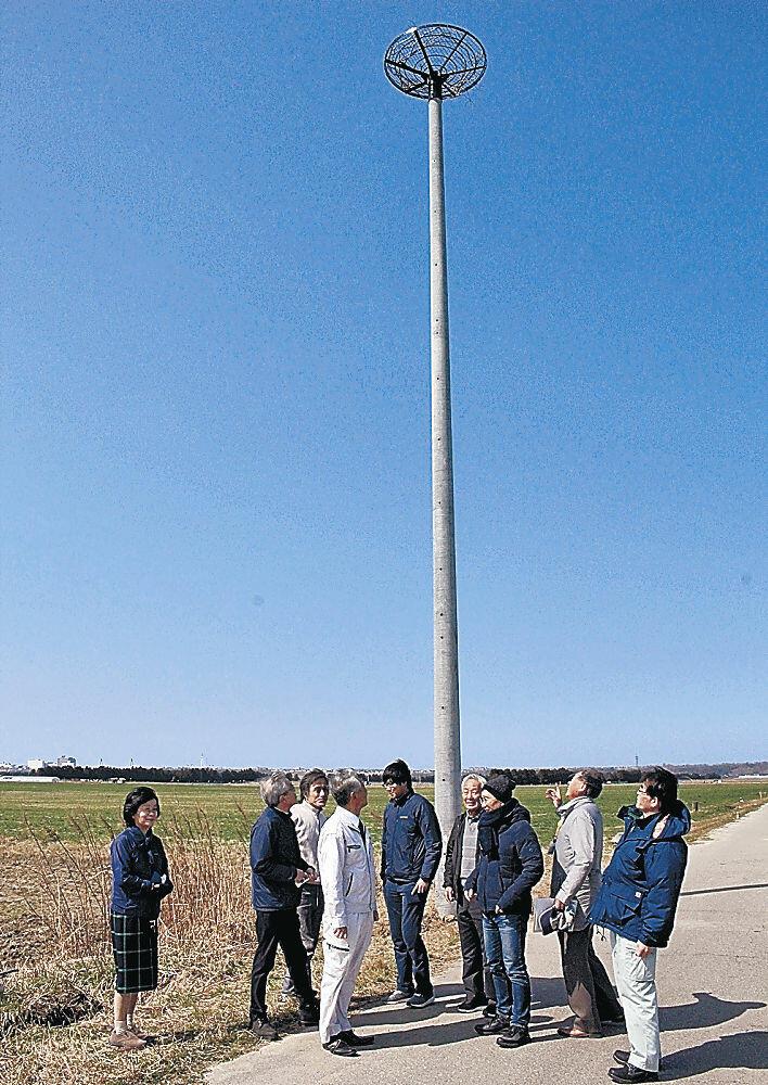 設置された巣塔を見物する関係者=河北潟干拓地