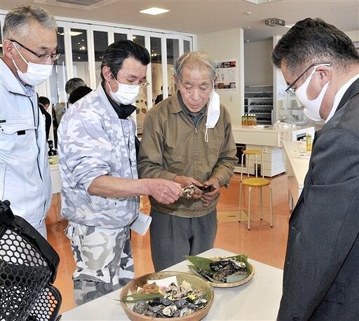 新たな方式を使った養殖マガキを試食したお披露目会=3月11日、福井県小浜市食文化館