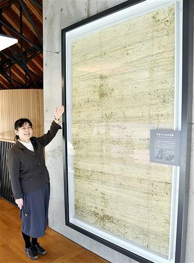 縦約2メートル、横約1・2メートルの巨大な死海の年縞=3月11日、福井県若狭町鳥浜の県年縞博物館