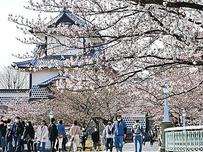 開花の兼六園 27日から無料開園