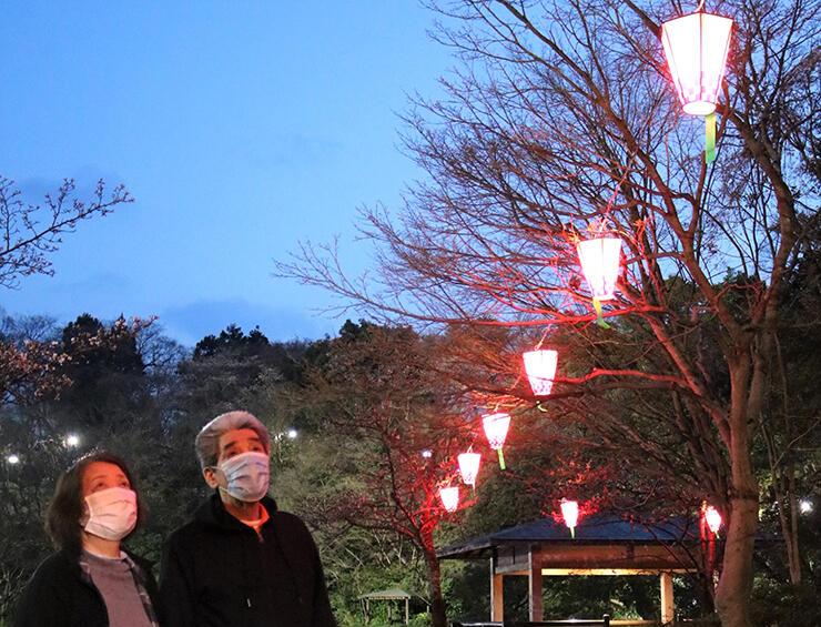 高岡古城公園の中の島に飾られたぼんぼりを眺める来園者