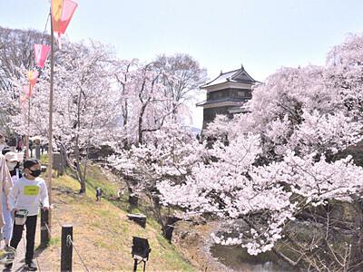 「千本桜まつり」2年ぶり 桜満開の上田城跡公園