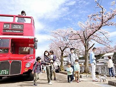 見て食べて 行く春満喫 福井で「桜パーク」 街巡るレトロバス人気
