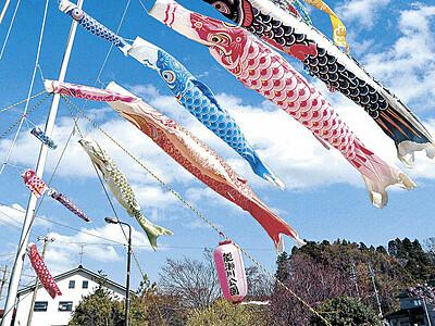 津幡・能瀬川公園 こいのぼり春風に泳ぐ