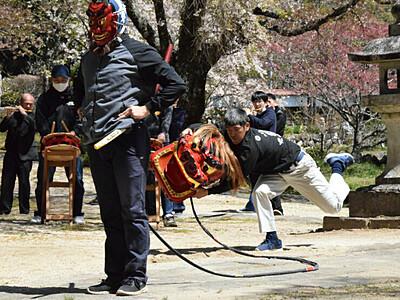 屋台獅子「密」避け躍動 高森・瑠璃寺、2年ぶり披露