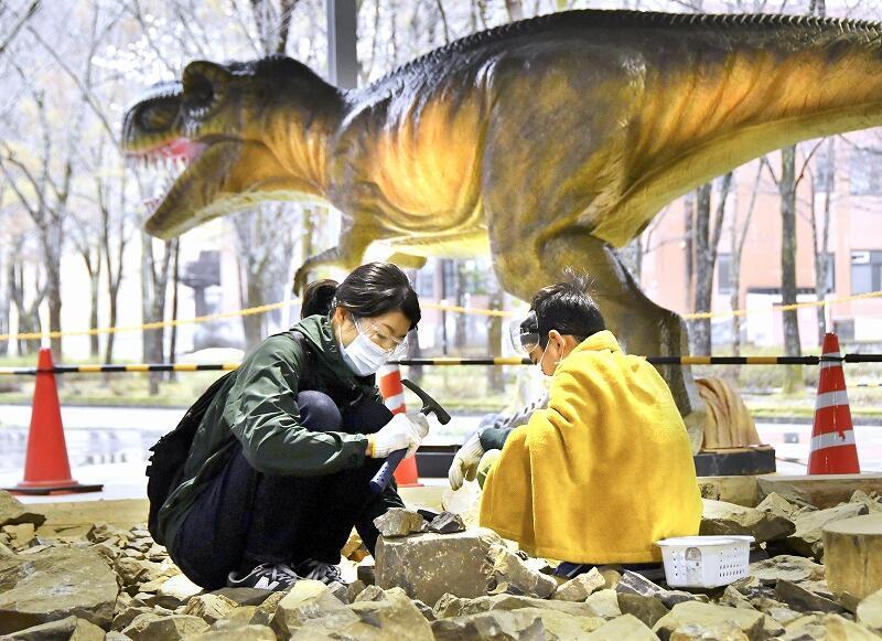 再開したホロッサで化石を発掘する親子。奥はこの日お目見えした恐竜モニュメント=4月17日、福井県大野市角野