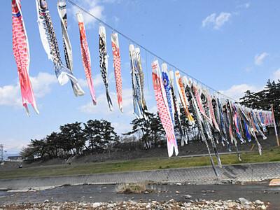 須坂の大空、コイ100匹 新型コロナ収束願う