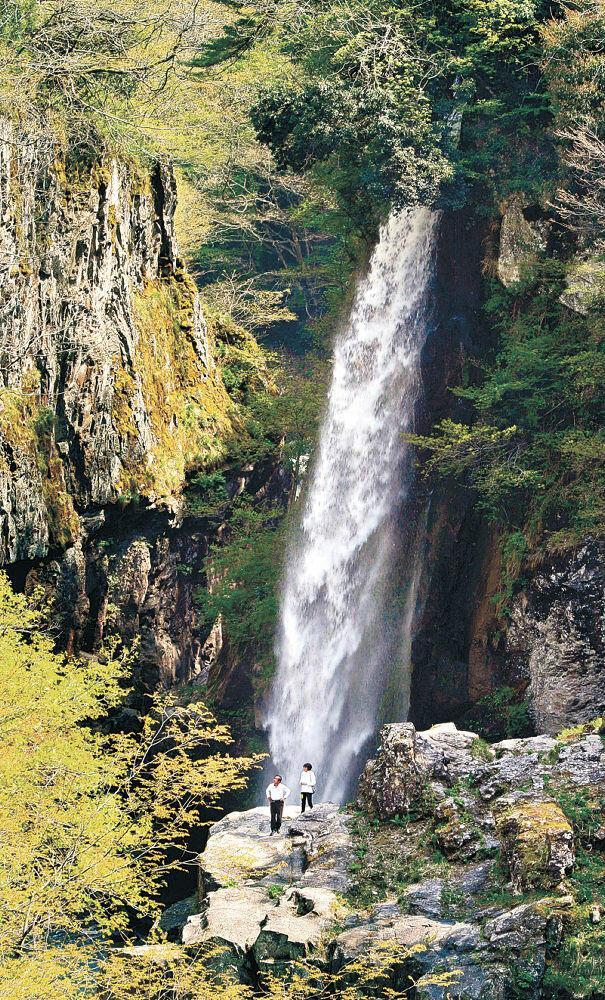 水量が増し、豪快に流れ落ちる綿ケ滝=白山市下吉谷町