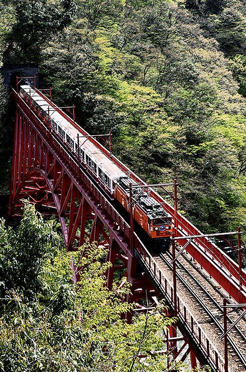 新緑の中、新山彦橋を渡るトロッコ電車=黒部市宇奈月町音澤