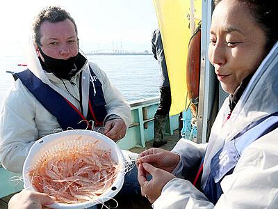 富山湾の宝石海上から満喫 白えび漁観光船が運航スタート