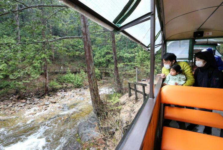 森林鉄道に乗って新緑や渓流の景色を楽しむ家族連れ=29日、上松町