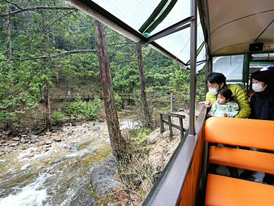森林浴へ、静かに出発進行 上松・赤沢自然休養林