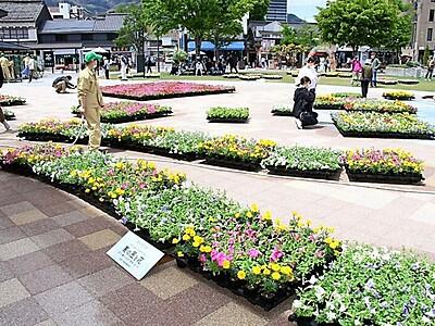「信州の自然」で彩り 善光寺花回廊2年ぶり 5日まで