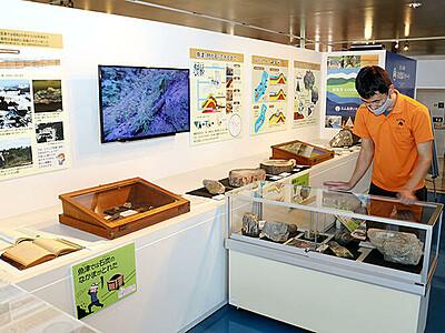 木が化石へ変化 パネルで過程解説 魚津埋没林博物館