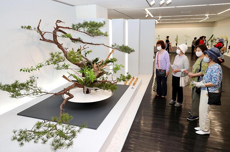松の木を主材にした超大作が並ぶ会場