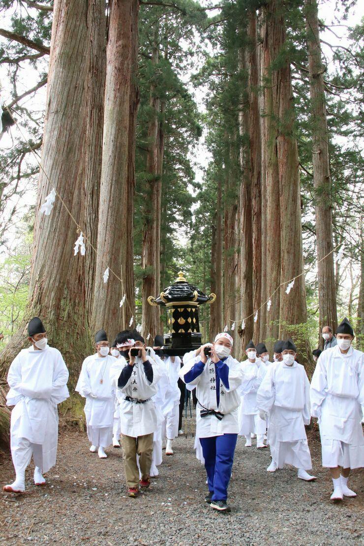 戸隠神社奥社参道の杉並木を進む奥社神輿