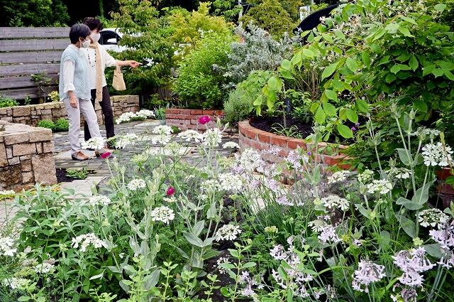 季節の草花でいっぱいの空間が楽しめるオープンガーデン=21日、高浜町馬居寺の「中嶋造園」