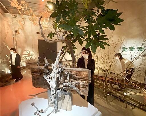 作家らのコラボ作品が並ぶ森の作家展=福井県あわら市の金津創作の森美術館