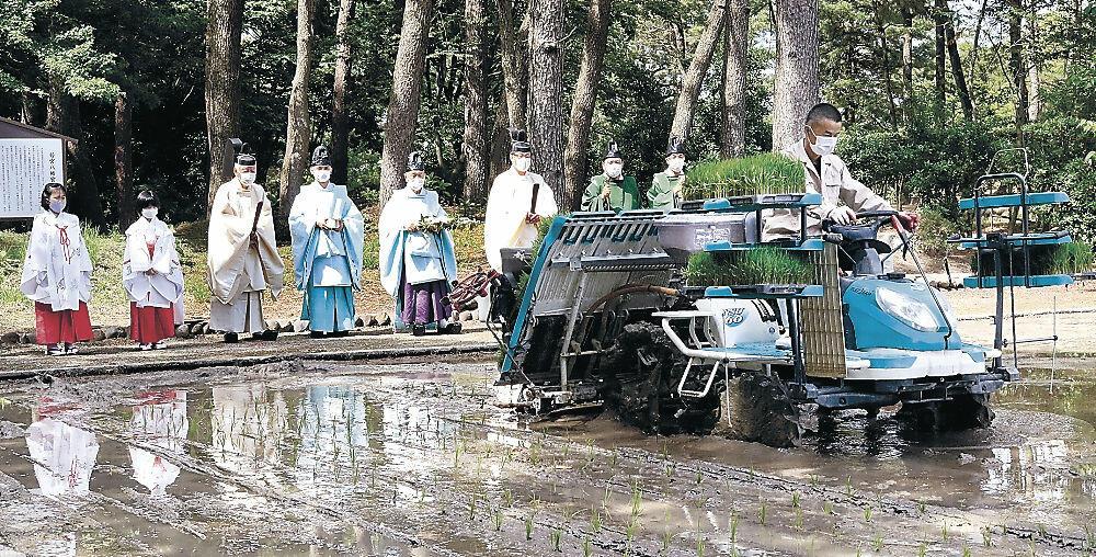 機械での田植えを見守る神職=白山市若宮1丁目