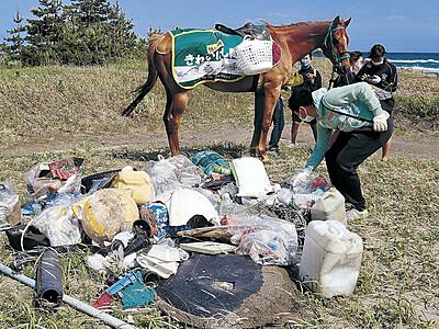 引退した競走馬 珠洲の海岸清掃「初出走」