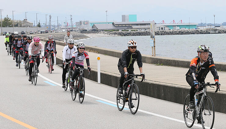 「富山湾岸サイクリングコース」を走る人たち=2019年4月、魚津市内