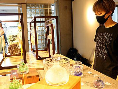 浅漬け鉢と風鈴200点並ぶ ガラス工房ショップ企画展