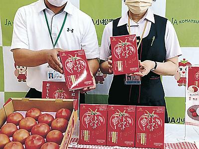 トマトカレー新しく JA小松市、販売から10年