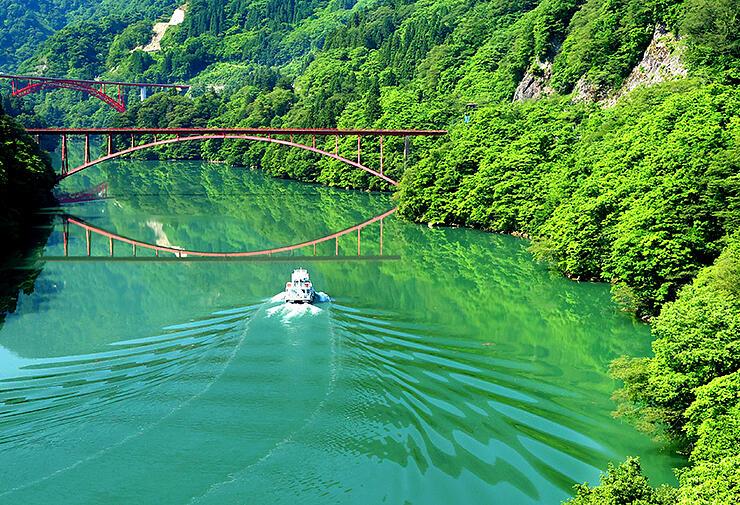 新緑の山々に囲まれた水面を進む遊覧船=庄川峡