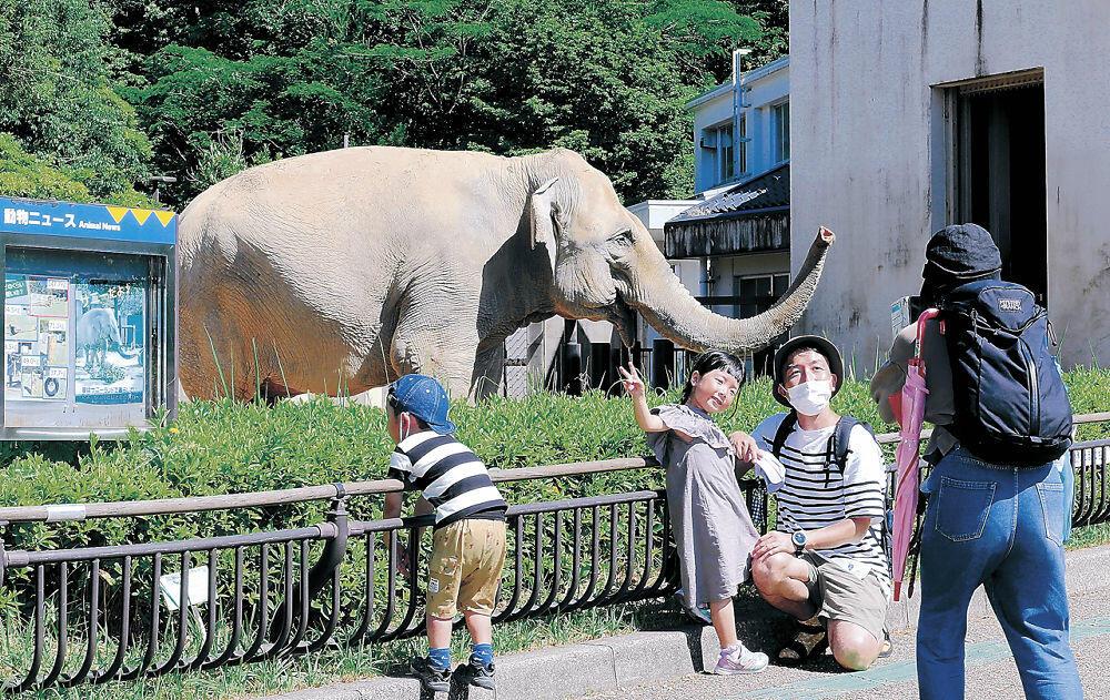 営業が再開されたいしかわ動物園でゾウと記念写真を撮る家族連れ=能美市