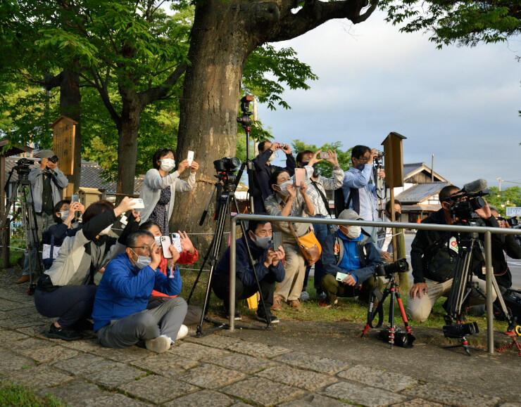東鳥居越しの太陽を写真に収める人たち