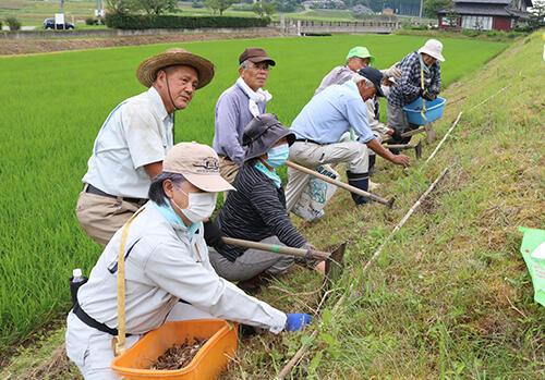ヒガンバナの里づくり委員会を設立した渋谷委員長(手前から2人目)ら五郎丸地区の住民