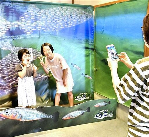 イトヨと一緒に泳いでいるような写真が撮れるフォトスポット=福井県大野市の本願清水イトヨの里