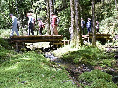 横岳コケ群生地、整備終わる 南牧村「八ケ岳大自然郷」