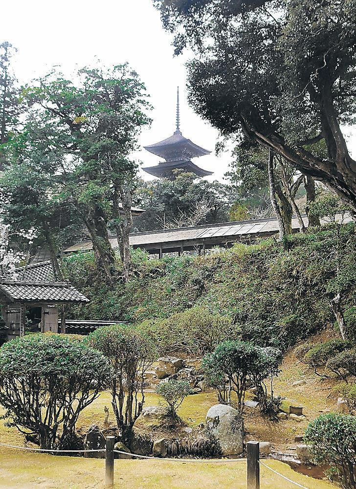 五重塔をはじめ10棟の国重要文化財が立ち並ぶ妙成寺。羽咋市が周辺整備事業に乗りだす=同市滝谷町