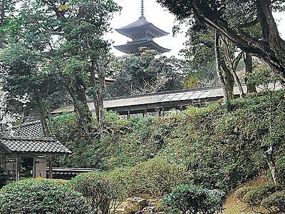 知られざる旧跡に看板 妙成寺 国宝指定へ機運醸成 日像の杖塚や展望地点