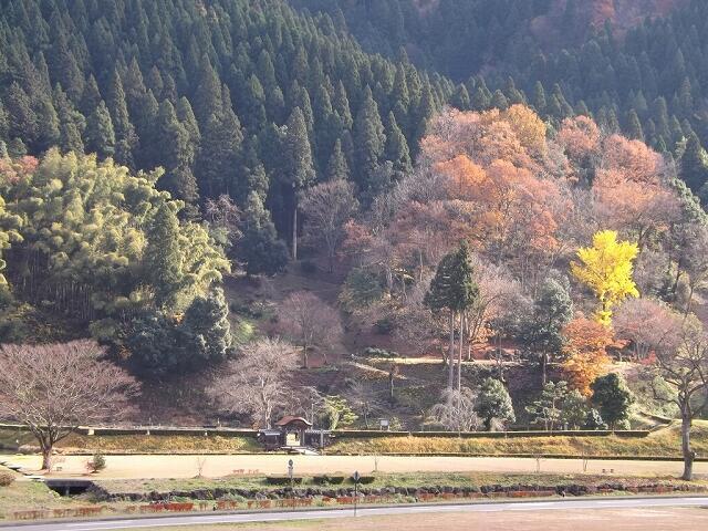 城山の麓にある一乗谷朝倉氏遺跡=福井県福井市