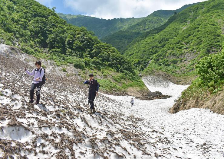 荒沢岳の中荒沢沿いに積もり、年間を通じて消えない万年雪=19日、魚沼市銀山平