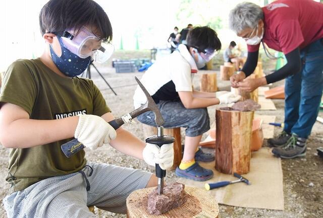 タイから運ばれた石を割って化石を探す参加者=7月22日、勝山市の福井県立恐竜博物館