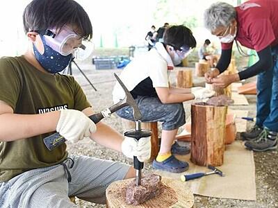 恐竜化石発掘体験して、福井県立恐竜博物館で8月22日までイベント タイから1億2000万年前の石用意