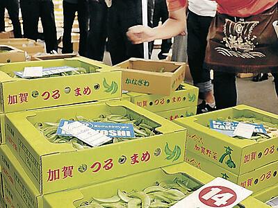加賀つるまめ緑鮮やか 金沢の中央市場で初競り