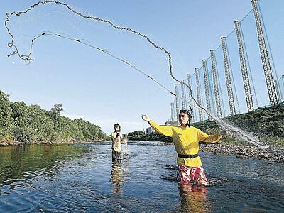 アユの網漁が解禁 犀川や浅野川「昨年より多い」