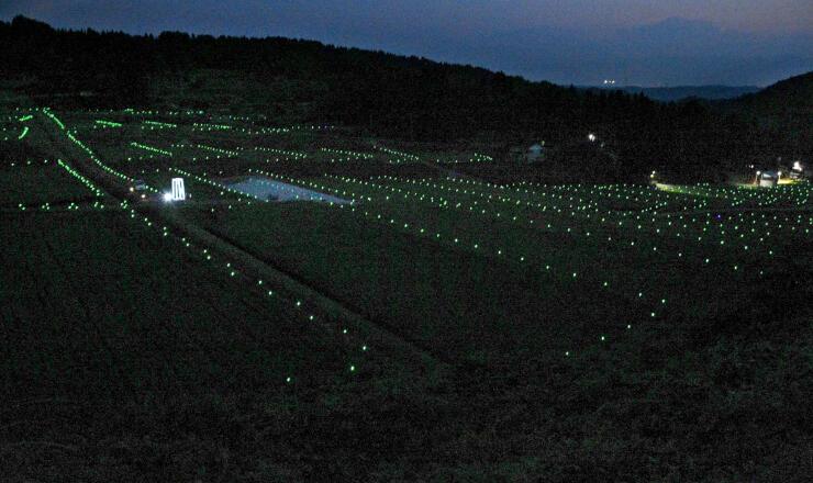 棚田の夜景を楽しもうと水田にLEDライトを配した「棚田のきらめき」=上越市牧区