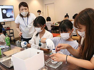 子ども向け産業観光でハンドクリーム作り 前田薬品工業