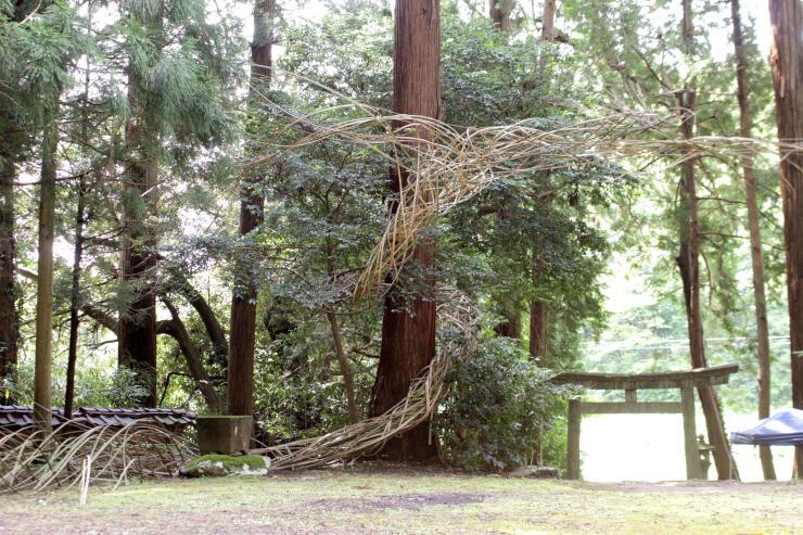 大輪龍志さんの作品「兆」。舞い上がる鳳凰(ほうおう)のような造形が、神社の境内いっぱいに竹で表現されている=佐渡市安養寺の羽黒神社