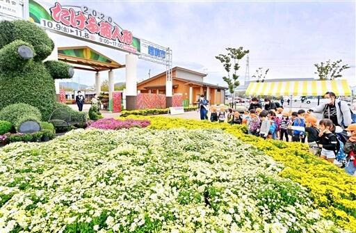 開幕した2020たけふ菊人形の会場で色とりどりに咲き誇る菊花=8月9日、福井県越前市武生中央公園