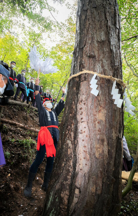 一之柱にするアカマツを選び、神事を終えて万歳三唱する木やり衆ら